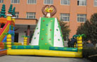 LeTian inflatable climbing LT-0111013