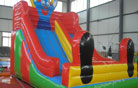 LeTian inflatable slide LT-0103003