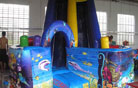 LeTian inflatable slide LT-0103010