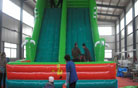 LeTian inflatable slide LT-0103012