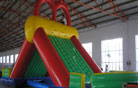 LeTian inflatable slide LT-0103026