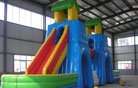 LeTian inflatable slide LT-0103029