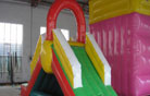 LeTian inflatable slide LT-0103033
