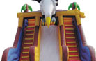 LeTian inflatable slide LT-0103052