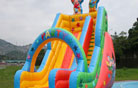 LeTian inflatable slide LT-0103055