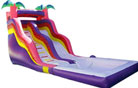 LeTian inflatable water slide LT-0114012